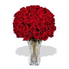 48 Premium Rose